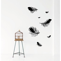 Feather Zwart