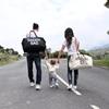 Childhome Mommy Bag verzorgingstas Ecru