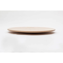 360 Balance board