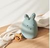 Liewood Winston Nachtlamp Rabbit Peppermint
